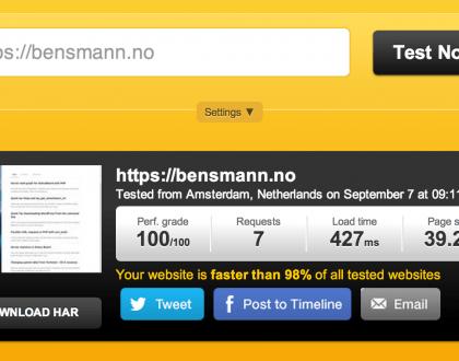 Pomen hitrosti nalaganja internetne strani